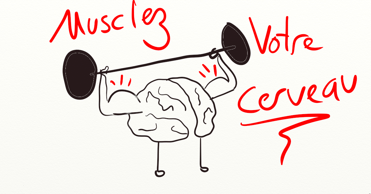 Resultado de imagen de muscler les cerveau