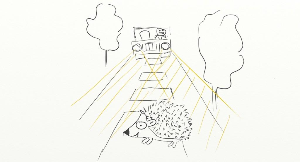 Les hérissons gèrent mal leur stress